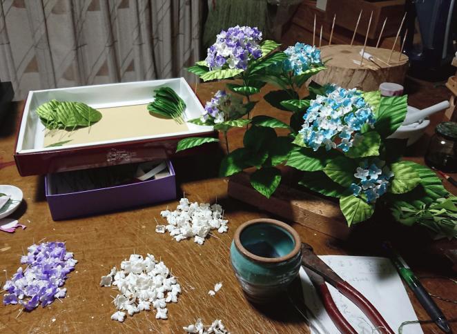 色紫陽花の平薬「部屋の様子」