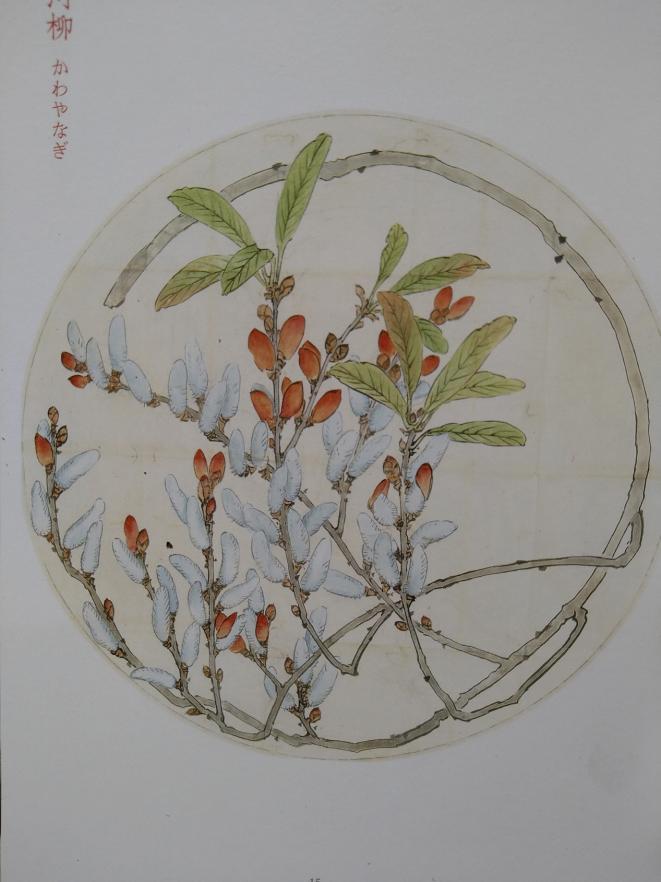 真綿と河柳と 図案