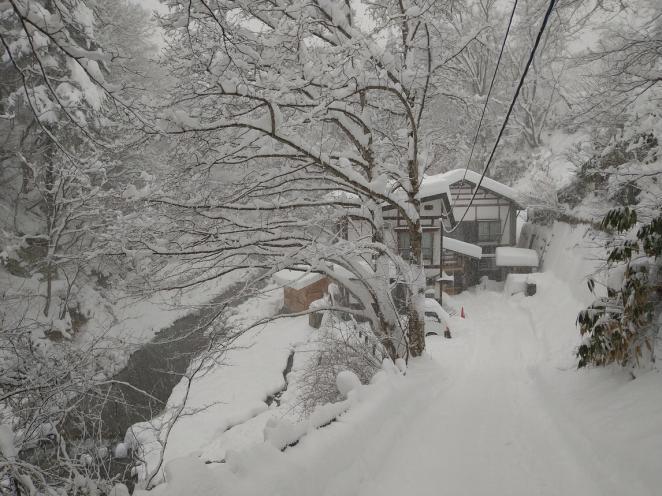 雪の井筒屋